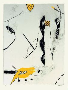 Noir Blanc Gris Jaune II by Francois Bruetschy