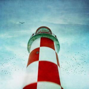Lighthouse with Birds by francois dion