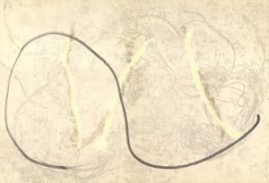 Curve by Francois Fiedler