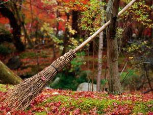 Broom and Gardens at Eikando Temple, Kyoto, Japan by Frank Carter