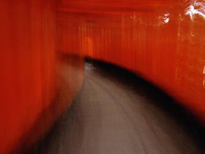 On the Move Through the Tunnel of Tori, Kyoto, Kinki, Japan,