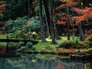 Saiho-Ji Garden in Autumn, Kyoto, Japan by Frank Carter