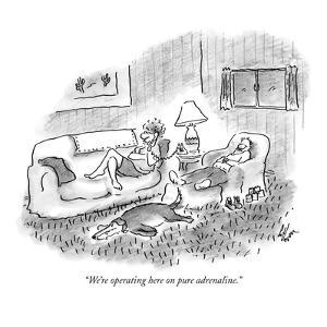 """""""We're operating here on pure adrenaline."""" - New Yorker Cartoon by Frank Cotham"""