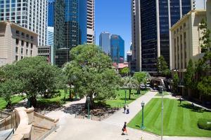 Anzac Square, Brisbane, Queensland, Australia, Oceania by Frank Fell