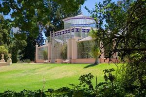 Botanical Gardens, the Palm House, Adelaide, South Australia, Oceania by Frank Fell