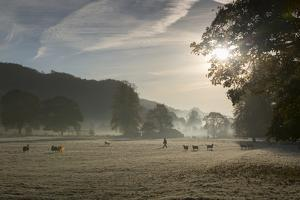 Cromford, Matlock, Peak District National Park, Derbyshire, England, United Kingdom, Europe by Frank Fell