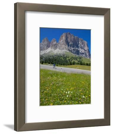Cyclist and Sassolungo Group, Sella Pass, Trento and Bolzano Provinces, Italian Dolomites, Italy