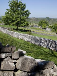 Dry Stone Walls, Hartington, Peak District, Derbyshire, England, United Kingdom, Europe by Frank Fell