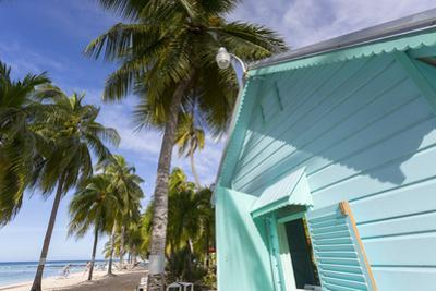 Hastings Beach, Christ Church, Barbados, West Indies, Caribbean, Central America by Frank Fell