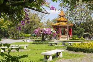 Lumphini Park, Ratchadamri Road, Bangkok, Thailand, Southeast Asia, Asia by Frank Fell