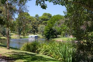 River Torrens and 'Popeye' Boat, Adelaide, South Australia, Oceania by Frank Fell