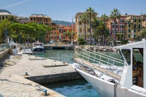 Santa Margherita Ligure Harbour, Genova (Genoa), Liguria, Italy, Europe by Frank Fell