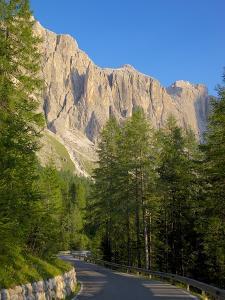 Sella Pass, Trento and Bolzano Provinces, Italian Dolomites, Italy, Europe by Frank Fell