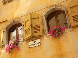 Shuttered Windows and Flowers, Piazza Mercato, Belluno, Province of Belluno, Veneto, Italy, Europe by Frank Fell