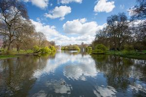 St. James's Park, Whitehall, Westminster, London, England, United Kingdom, Europe by Frank Fell