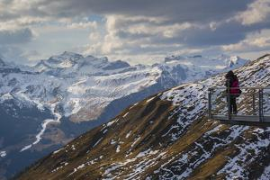 View from Grindelwald First, Jungfrau region, Bernese Oberland, Swiss Alps, Switzerland, Europe by Frank Fell
