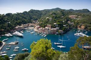 View of Harbour from Castle, Portofino, Genova (Genoa), Liguria, Italy, Europe by Frank Fell