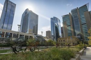 View of the Courthouse in Courthouse Park and surrounding urban office buildings, Downtown Calgary, by Frank Fell