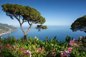 Villa Rufolo, Ravello, Costiera Amalfitana (Amalfi Coast), UNESCO World Heritage Site, Campania by Frank Fell