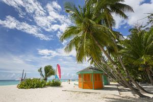 Worthing Beach, Christ Church, Barbados, West Indies, Caribbean, Central America by Frank Fell