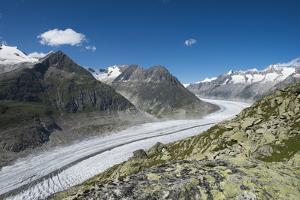 Aletsch Glacier, Eggishorn, Fiesch, Switzerland, Valais by Frank Fleischmann