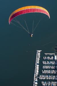 Paraglider, Flight, Paragliding, Enjoyment, Vacation by Frank Fleischmann