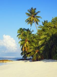 Beach at Soneva Fushi Resort in the Baa Atoll by Frank Krahmer