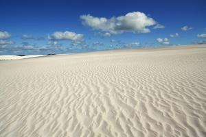 Dune Landscape near Cervantes by Frank Krahmer