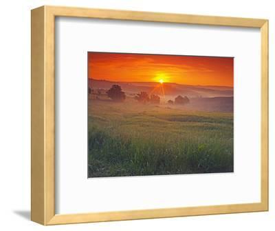 Farmland at Sunrise
