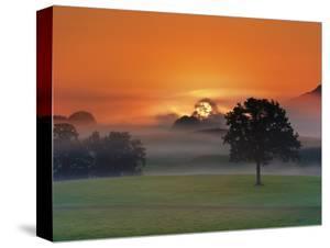 Foggy landscape at sunrise by Frank Krahmer