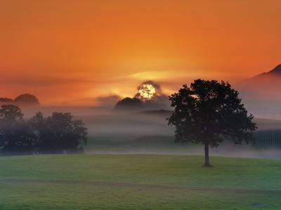 Foggy landscape at sunrise