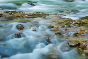 Mountain Brook with Rocks, Vintgar Gorge, Bled, Triglav National Park, Julian Alps, Slovenia by Frank Krahmer