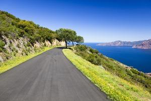 Road by the Blue Sea by Frank Lukasseck