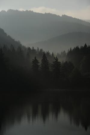 The Morning Light Is Coming Up in the Harz Mountains of Germany