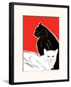 Black and White Cat by Frank Mcintosh
