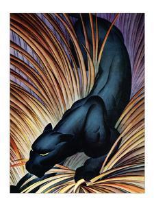 Black Panther by Frank Mcintosh