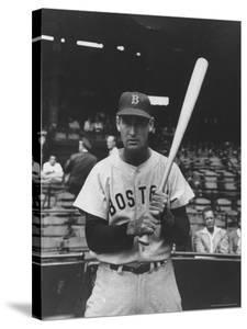 Boston Red Sox Player Ted Williams by Frank Scherschel