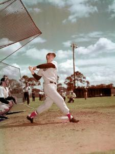 Red Sox Baseball Star Ted Williams at Bat by Frank Scherschel