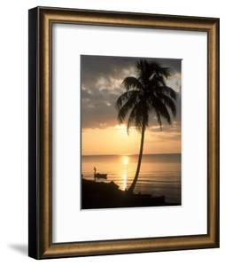 Sunrise with Man in Boat and Palm Tree, Belize by Frank Staub
