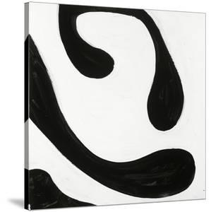 Black and White D by Franka Palek
