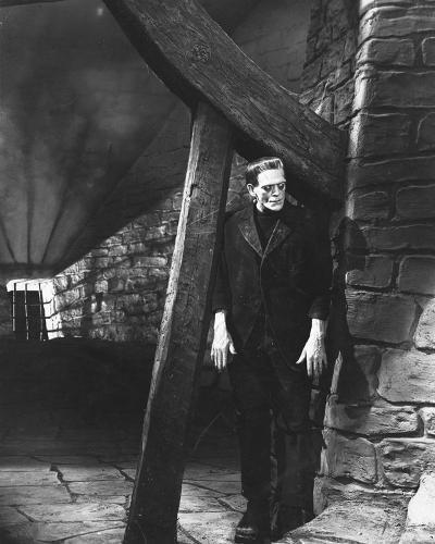 Frankenstein--Photo