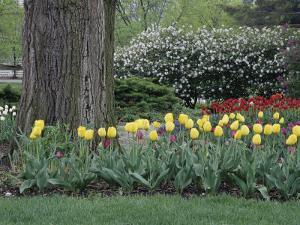 Franklin Park, Columbus, Ohio, USA
