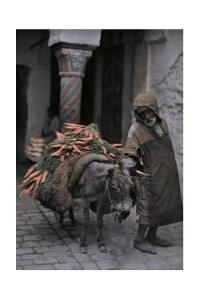 A Carrot Peddler Walks His Donkey to the Market by Franklin Price Knott