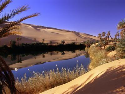 Oasis at Um Al Ma salt lake, Sahara desert, Ubari, Libya