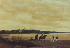 The Island Itamaraca, 1637 by Frans Post