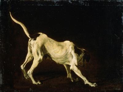 A Dog, 17th Century