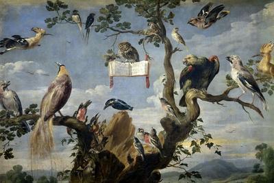 Concert of the Birds, 1629-1630, Flemish School