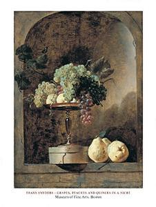 Grapes, Peaches And Quinches In A Niche, 1883 by Frans Snyders
