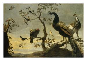 Oiseaux sur des branches by Frans Snyders