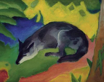 Black and Blue Fox